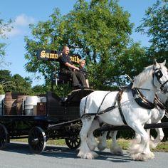 Shire Horse Gallery near Stutton