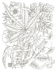 """""""Hemp & Phlox,""""  an adult coloring page by Cynthia Emerlye. This is part of a collection of Hemp designs for Benevolence Bound, a company which advocates for the industrial uses of hemp."""