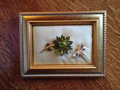 Vintage flower and dragon fly pin framed.