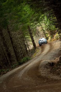 These Subaru Rally Photos Will Blow Your Mind Subaru Wrc, Subaru Rally, Subaru Impreza, Wrx, Autos Rally, Rally Car, Car Car, Rallye Wrc, Stock Car