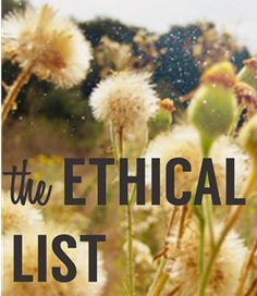 A list of fair trade and ethically sourced products