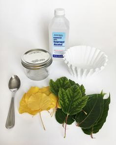Fall science experiments _ science experiments kids, science experiments for middle schoo Fall Preschool, Preschool Science, Teaching Science, Science For Kids, Science Activities, Science Ideas, Preschool Ideas, Science Experiments For Preschoolers, Science Lessons