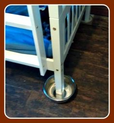 Home made Bed Bug Trap