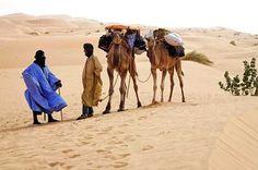 Située en Afrique du nord, entre le Maroc, l'Algérie, le Mali et le Sénégal, la Mauritanie est le résultat étonnant de la rencontre du Maghreb et de l'Afrique noire, au c½ur du Sahara. François-Xavier Prévot, photographe-marcheur, l'a sillonnée de long en large.
