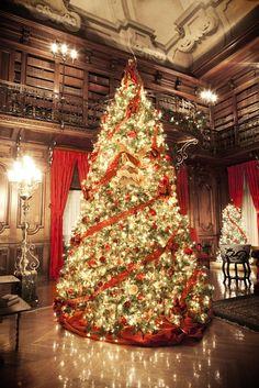 christmas tree raising at biltmore house - Biltmore House Christmas