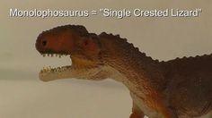 A Review of the Wild Safari Dinosaurs Monolophosaurus Dinosaur Model