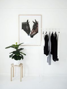Interior Styling | Clean + Green for the New Year (via Bloglovin.com )