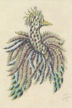 Jean Schlumberger's sketch for his Phoenix clip. #TiffanyPinterest