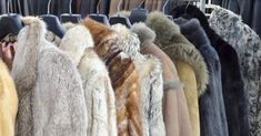 'Faux' Fur Products May Often Be Real – Can You Tell The Difference?