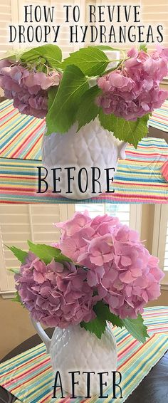 hydrangea garden care If your hydrangea blooms are looking droopy and sad, try this super simple trick to perk them up and make them last for days and days! Hortensia Hydrangea, Hydrangea Care, Hydrangea Not Blooming, Hydrangea Flower, Container Gardening, Gardening Tips, Organic Gardening, Gardening Supplies, Succulent Containers