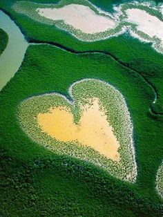Coeur de Voh (Heart Of Voh) | New Caledonia | A natural large formation of mangrove vegetation resembling a heart that can be seen only from above