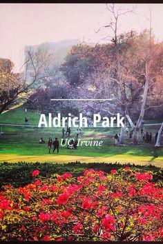 Aldrich Park by UC Irvine on Steller #steller