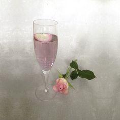 Rodham Rose Cocktail