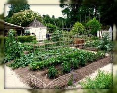Living In Williamsburg, Virginia: Colonial Gardner at Colonial Williamsburg, Williamsburg, Virginia