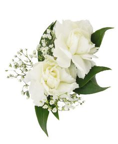 MINI CARNATION BOUTONNIERE -   Two mini carnations with babies breath Item #1367 .