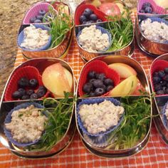 Massive collection of Healthy Lunches in a Box