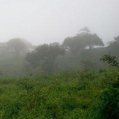11h, 16°C e muita neblina Country Roads, River, Outdoor, Serra Negra, Outdoors, Outdoor Games, The Great Outdoors, Rivers
