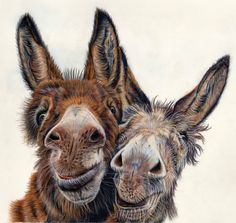 Color Pencil Drawing Tutorial Lisa Ann Watkins - Animal Art by LAW is creating colored pencil Animal Paintings, Animal Drawings, Art Drawings, Drawing Animals, Art Paintings, Pencil Drawings, Donkey Drawing, Canvas Art Prints, Fine Art Prints