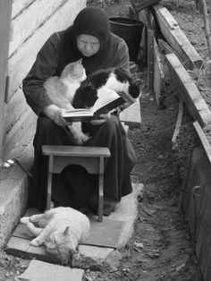 Woman reading with her cats
