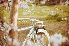 #BikeLove. #FlowersAddicted.