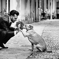 Picture of the MONTH @ Wedding photographer Carmelo Ucchino from Italy | Photo published on Monday, Aug 31, 2020 in category Wedding Moments on PROWEDaward #pictureoftheday #weddinginspiration #destinationwedding #weddingphoto #weddingday #weddingphotographer #bestwedding #pweddingelopement #weddingpictures #PROWEDaward Dog Wedding, Wedding Groom, Sicily Wedding, Give Me Five, High Five, Wedding Moments, Wedding Gallery, Photo Contest, Wedding Pictures
