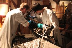 Students in the Conservation and Collections Management program at Fleming College put their lab skills to work at the Canoe Museum. Contact List, Canoe, Conservation, Behind The Scenes, Lab, Students, Management, College, Collections