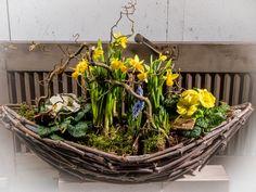 Frühlingsblumen_Garten.jpg 2.000×1.500 Pixel