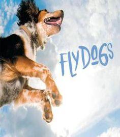 Flydogs PDF