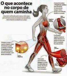 o que acontece no corpo de quem caminha