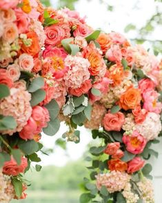 Living Coral - Pantone Color of the Year 2019 - Wedding Inspiration living coral flower wedding ceremony arch - wedding inspiration with pantone color of the year Coral Wedding Flowers, Floral Wedding, Peach Flowers, Colorful Flowers, Coral Color Wedding, Trendy Wedding, Peach Wedding Theme, Peach Party, Peach Weddings
