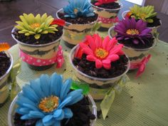 Edible Flower pots....maybe for a garden party?