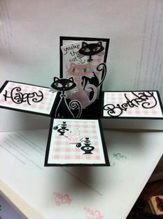 Cool Cat Card in a Box by Rose Reynolds - Cards and Paper Crafts at Splitcoaststampers