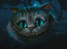 The Cheshire Cat The Cheshire Cat - The Cheshire Cat 1800x1200