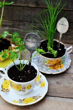 Cute #upcycling  herbal #planter! #diy