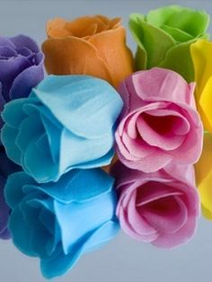 Colorful Love roses