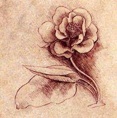 By Leonardo da Vinci.  wasbella102