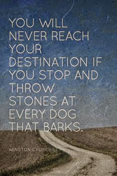 You Will Never Reach your destination if you stop and throw stones at every dog that barks. Winston Churchill