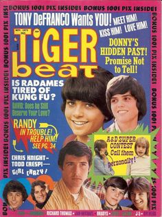 Used to run with my allowance money and get Tiger Beat. Then I'd pore over the stories and pictures of my favorites like Donny Osmond, Chris Knight, David Cassidy...