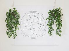 Constellation Star Chart Wall Tapestry Banner by bellesandghosts
