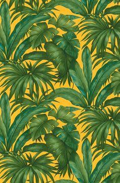 Tropical leaf wallpaper design by Versace called Giungla.