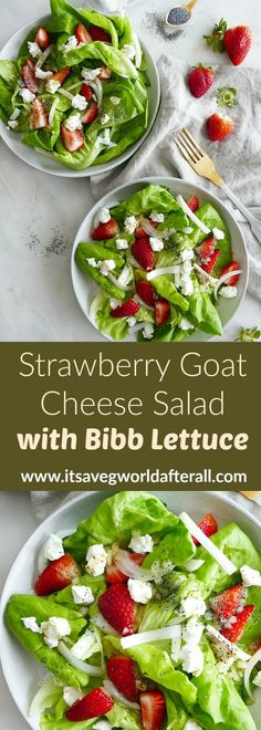 This Strawberry Goat Cheese Salad with Butter Lettuce is a fresh, delicious recipe for spring and summer. Serve this light salad on the side of fish, chicken, or an egg bake for brunch. It's refreshing, sweet, and tart all wrapped up into one dish. #butterlettuce #salad #goatcheese Healthy Vegetable Recipes, Best Vegetarian Recipes, Healthy Cooking, Healthy Dinner Recipes, Vegetarian Meals, Healthy Food, Lettuce Recipes, Easy Salad Recipes, Side Dish Recipes