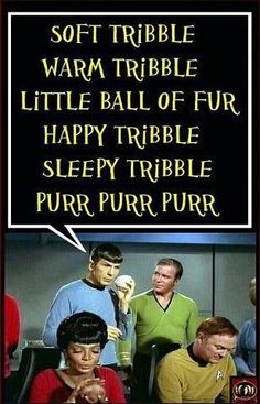 """Sing """"Soft Tribble"""" to me, Mr. Spock.  It takes a cretain level of geek to love this....and I do"""