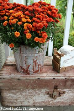 Vintage finds on a #fall porch eclecticallyvintage.com