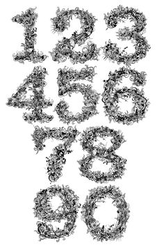 An experimental typeface totally composed by vegetal elements.