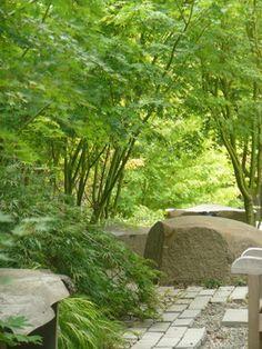 eclectic garden - eclectic - landscape - san francisco - Lucid Land Studio