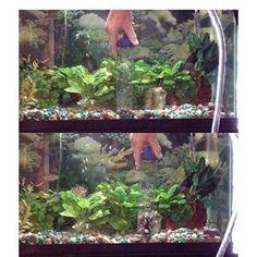 Gravel Cleaner for Aquarium, 2
