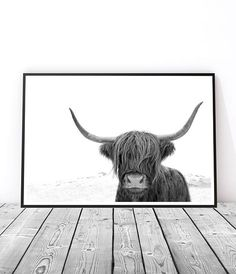 Highland Cow Print, Modern Wall Art Print, Scandinavian Artwork, Boho Home Decor, Black and White Pr Modern Wall Art, Large Wall Art, Large Wall Prints, Art Scandinave, Scandinavian Artwork, Scandinavian Interior, Grand Art Mural, Highland Cow Art, Highland Cattle