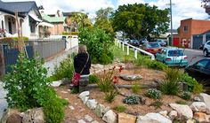 Interview raises questions around footpath gardens and councils – ACFCGN