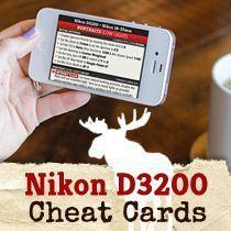 Moose's Low Light Portrait Settings & Tips for the Nikon D3200