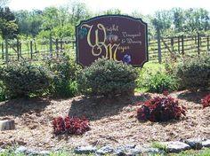 Wight - Meyer Vineyard & Winery - Shepherdsville, KY